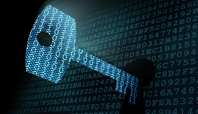 The Government will have access to all encrypted information, including personal emails, messages or even data stored on a private business server,
