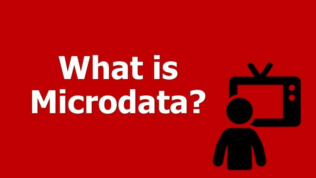Microdata means ?